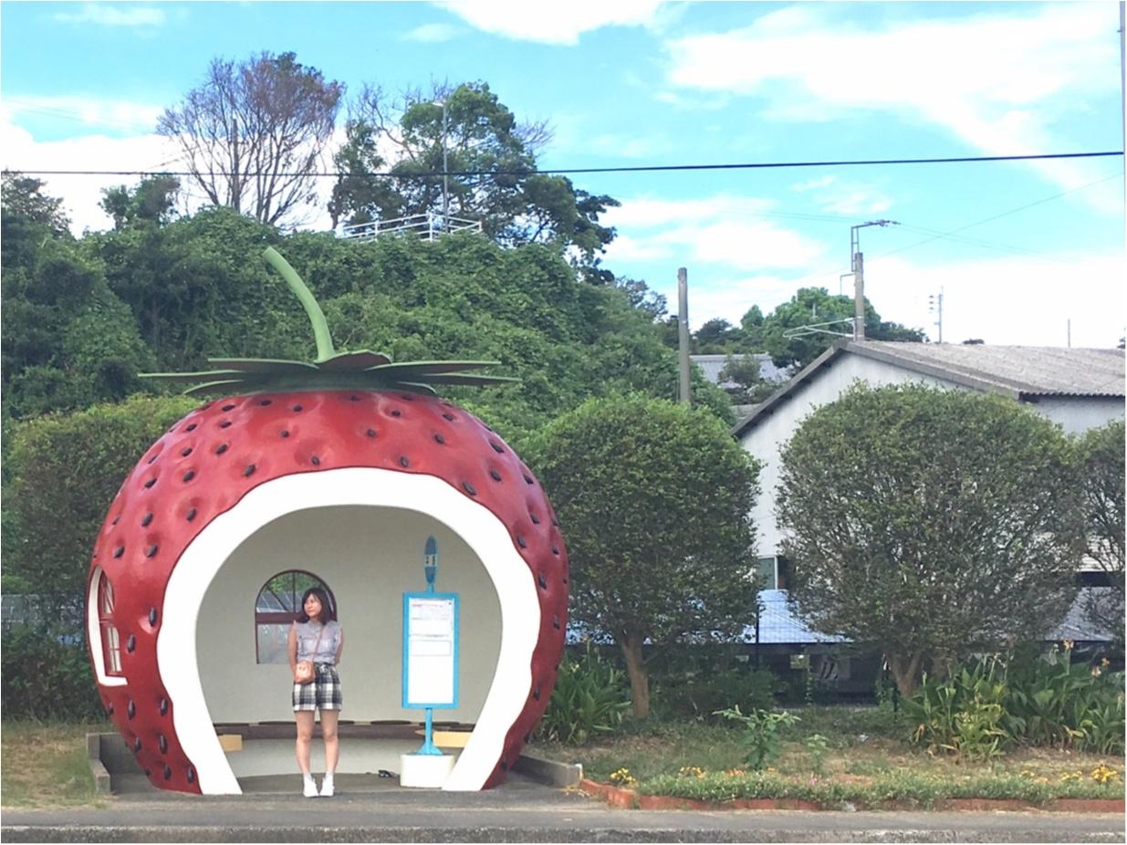 つい待ちたくなる!?長崎のかわいすぎる『フルーツバス停』_1