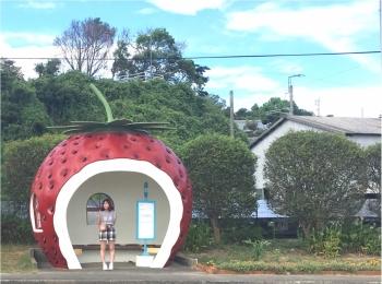 つい待ちたくなる!?長崎のかわいすぎる『フルーツバス停』
