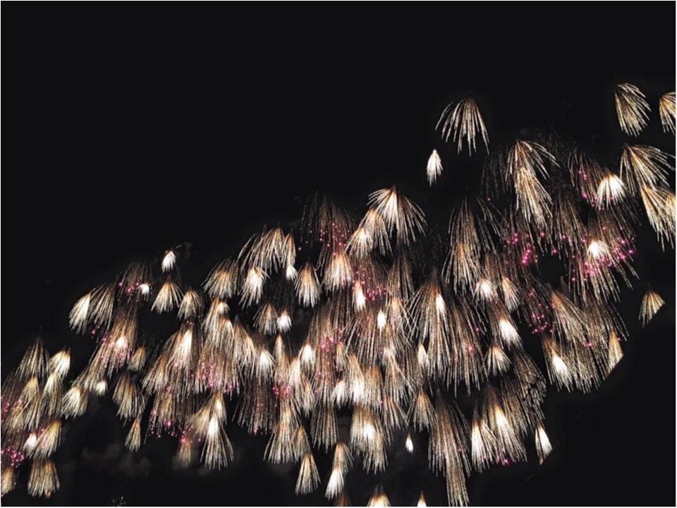 ≪ おすすめ花火情報 ≫ 全国屈指のデザイン花火!山形・赤川花火大会!!_6