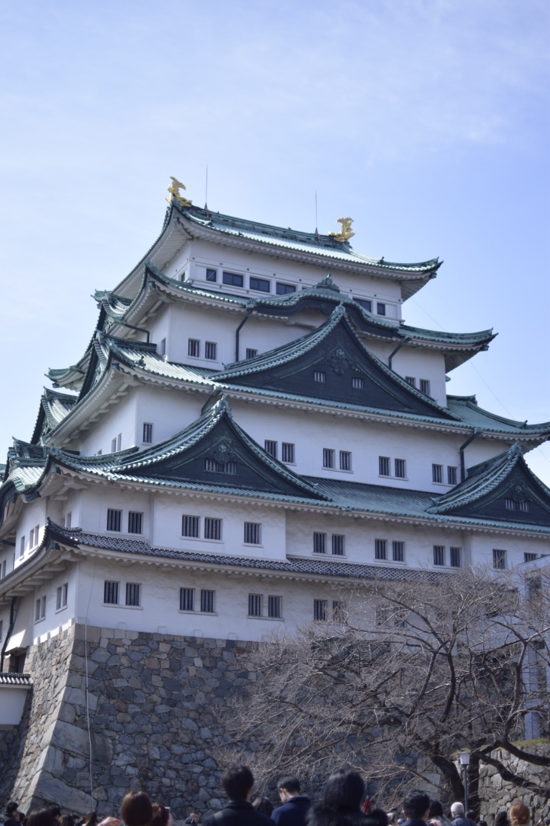 【名古屋】名古屋城でお花見!!名古屋城春まつり【桜】_6