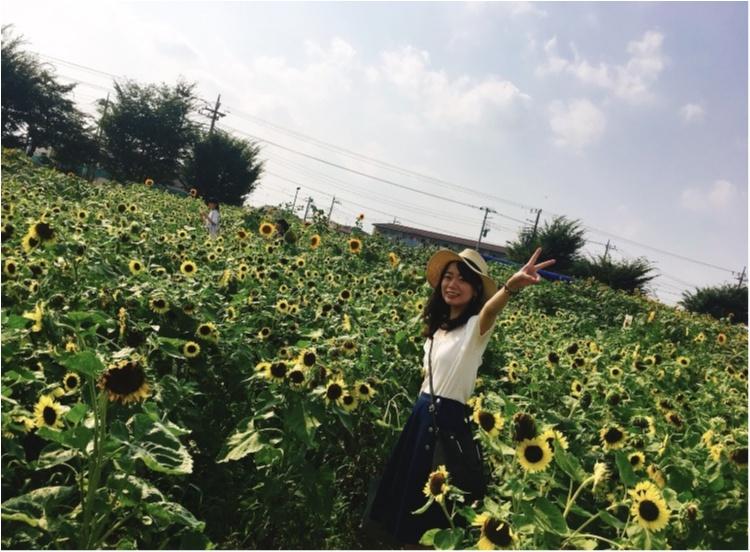 都内にある向日葵畑へ✨_2