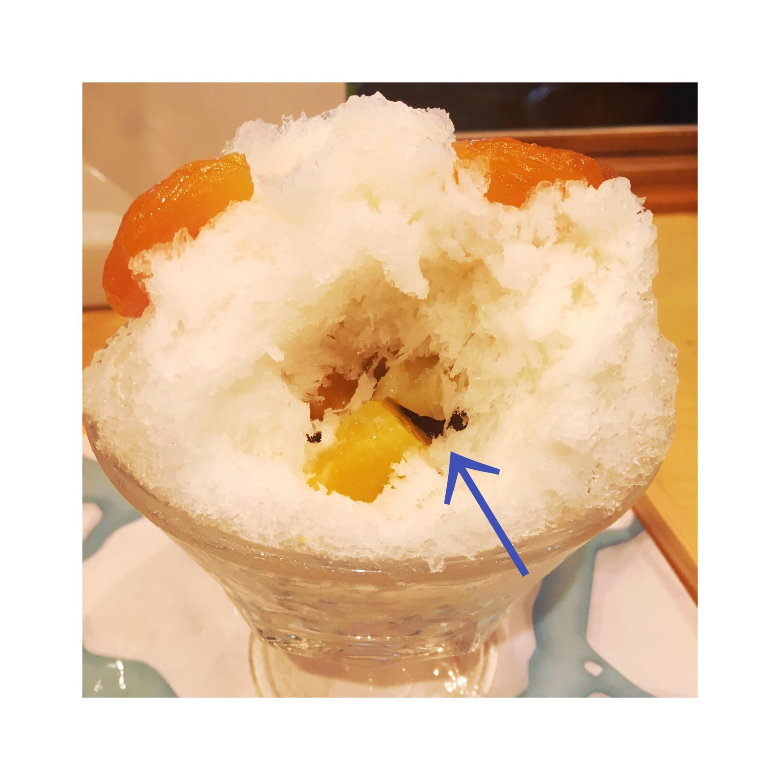 【恵比寿】夏が終わる前に絶対食べたい♡!可愛すぎて食べられない⁈〝くまさんかき氷〟❤️_3