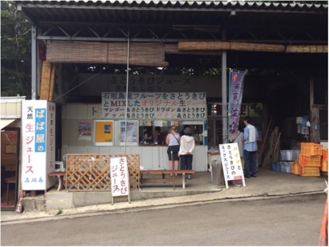 【沖縄離島の旅②】寄りたいお店がいっぱい♡石垣島のおすすめカフェ3選_3