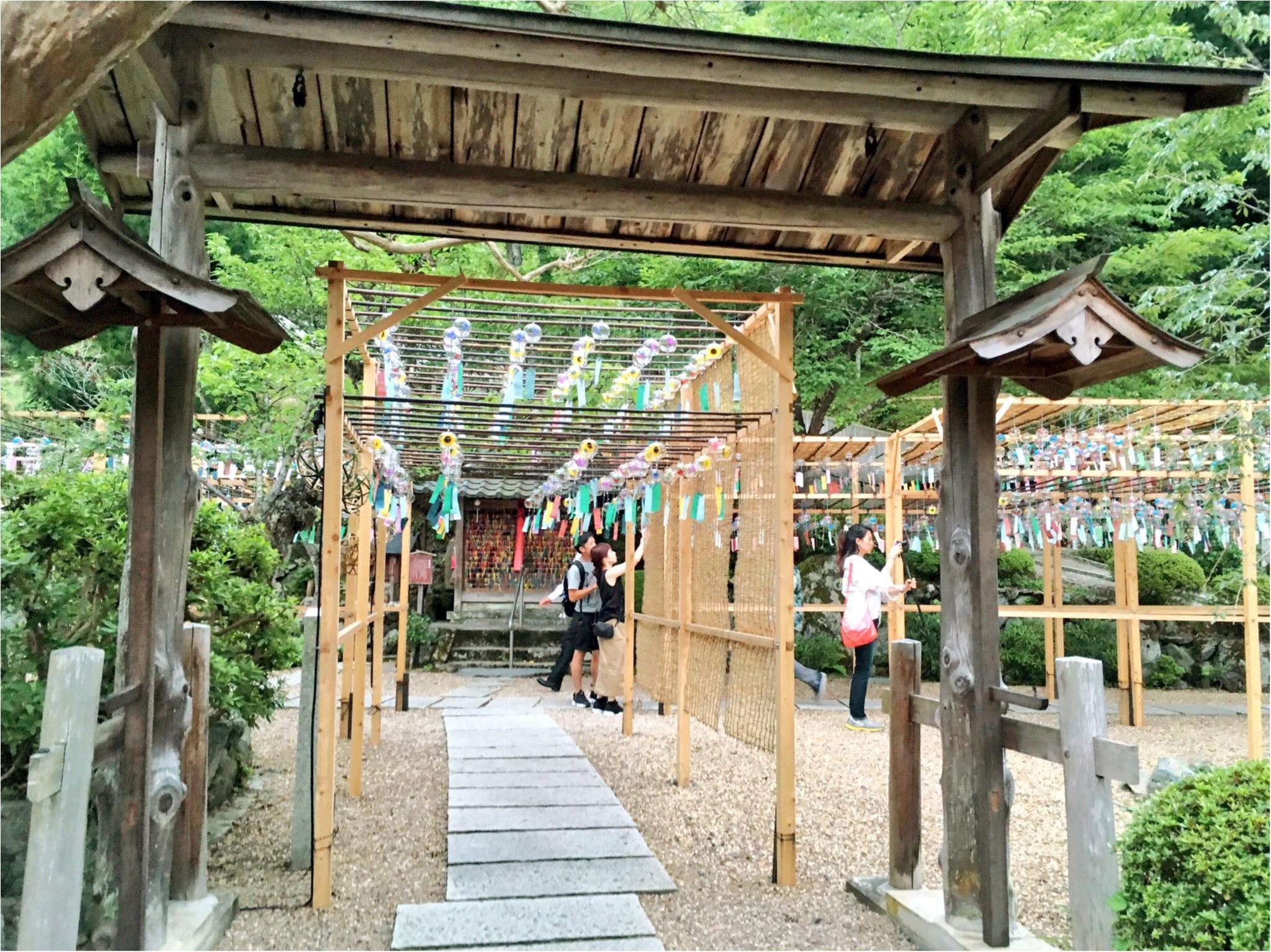 【フォトジェニックすぎる寺院】京都『正寿院』の魅力を紹介しちゃいます♡_9