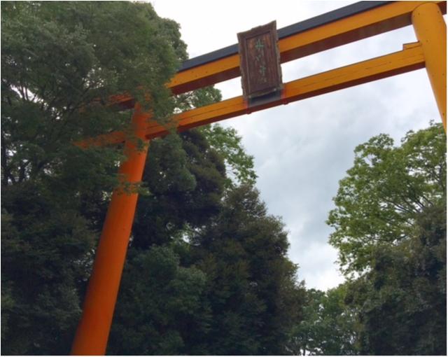 都内から1時間程で行けちゃう!「和」を感じられる観光スポット★_4