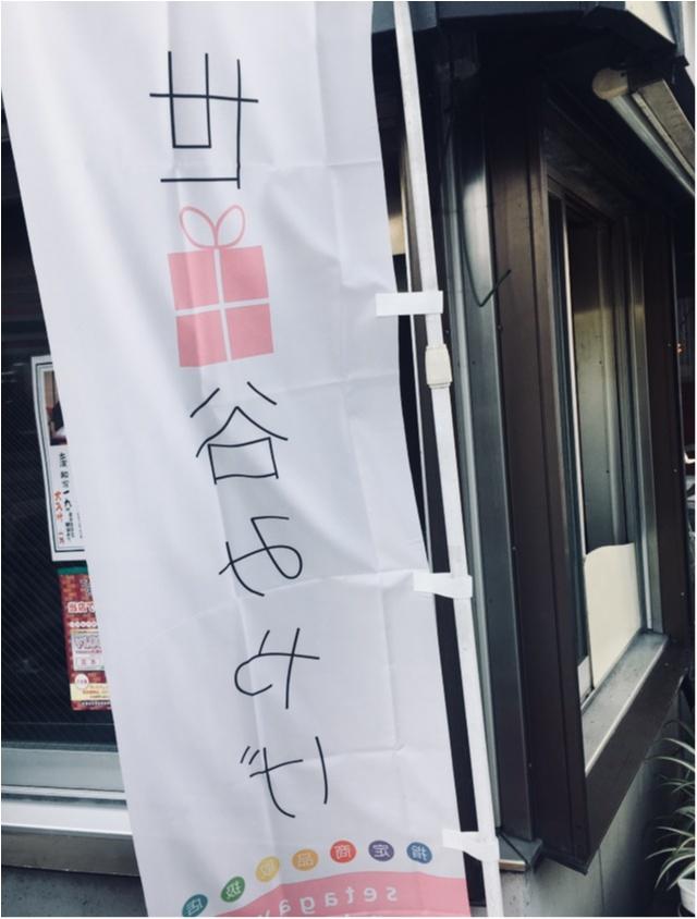 【ご当地モア〜東京〜】世田谷みやげのたいやきちゃん♡_1
