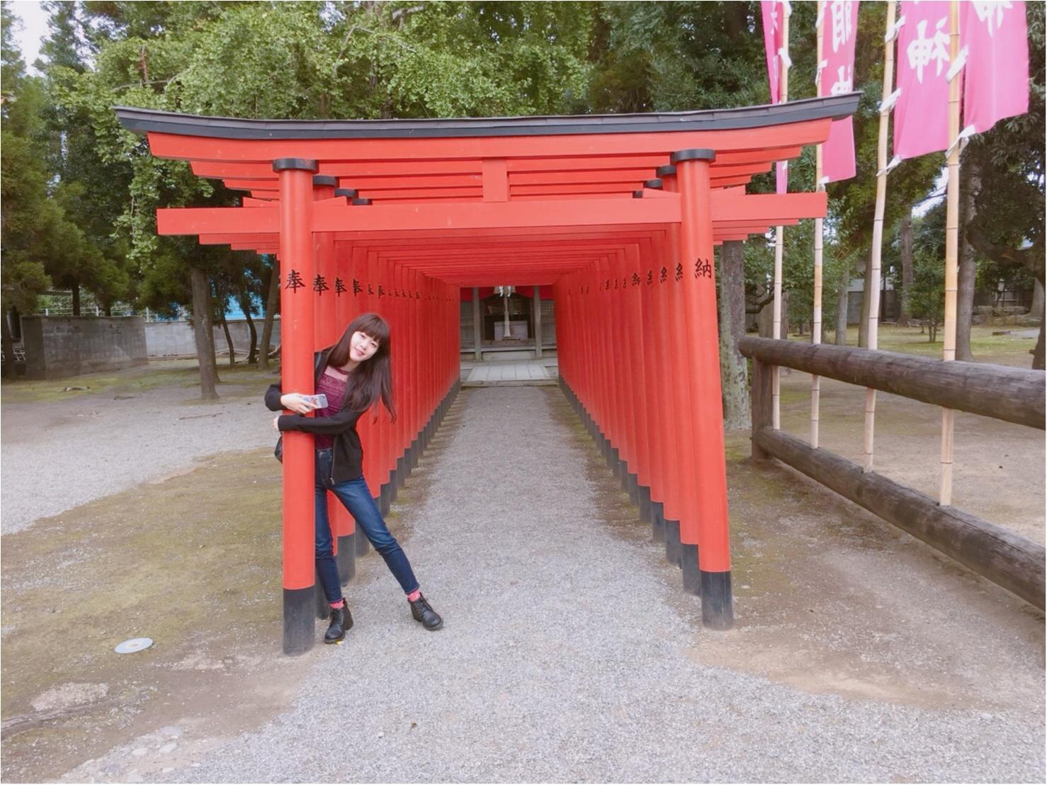 【動画で紹介!】熊本市内に発見! SNS映えする美しい庭園「水前寺成趣園」でリフレッシュ!【#モアチャレ 熊本の魅力発信!】_3