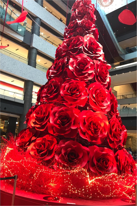 ★これこそLADY♡なクリスマスツリー!梅田に真っ赤なツリーが登場です★_2