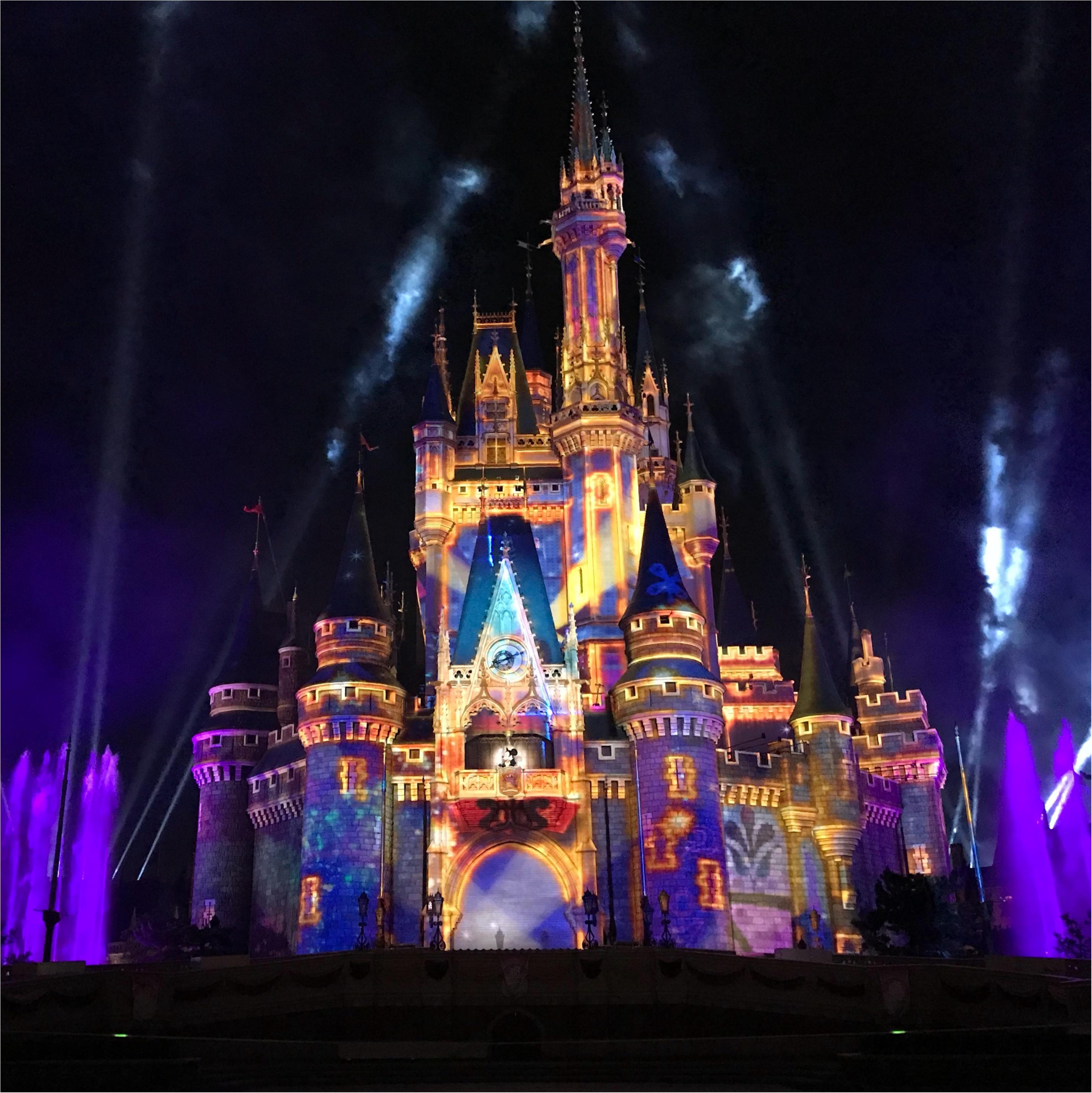 【Celebrate!Tokyo Disneyland】に当選したら絶対に知っておくべきポイントとは❤︎_5