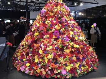 【POLA】1万輪のフラワーツリーがお出迎え!「B.A」体感イベントに行ってきました♡