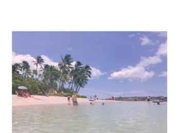 ハワイ旅行②