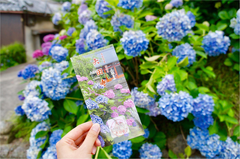 【\\あじさい寺//】まだ間に合います!奈良のおすすめスポット♡矢田寺をご紹介♪_1