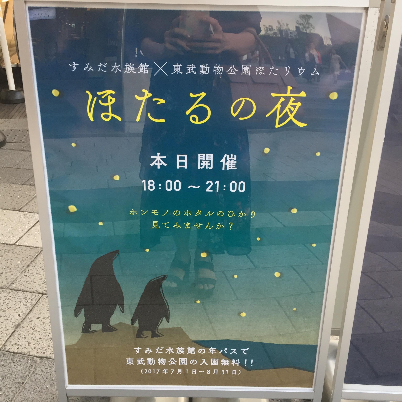 【6/18まで】すみだ水族館のスペシャルコラボ✨期間限定『ほたるの夜』でロマンチックな夜を♪♪ _1