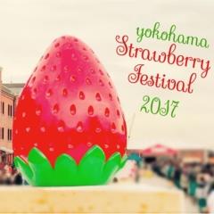 """《昨年22万人以上が訪れた‼︎》赤レンガ倉庫の""""いちごの収穫祭""""【ヨコハマ ストロベリーフェスティバル】が昨年よりパワーアップして開催中♪"""