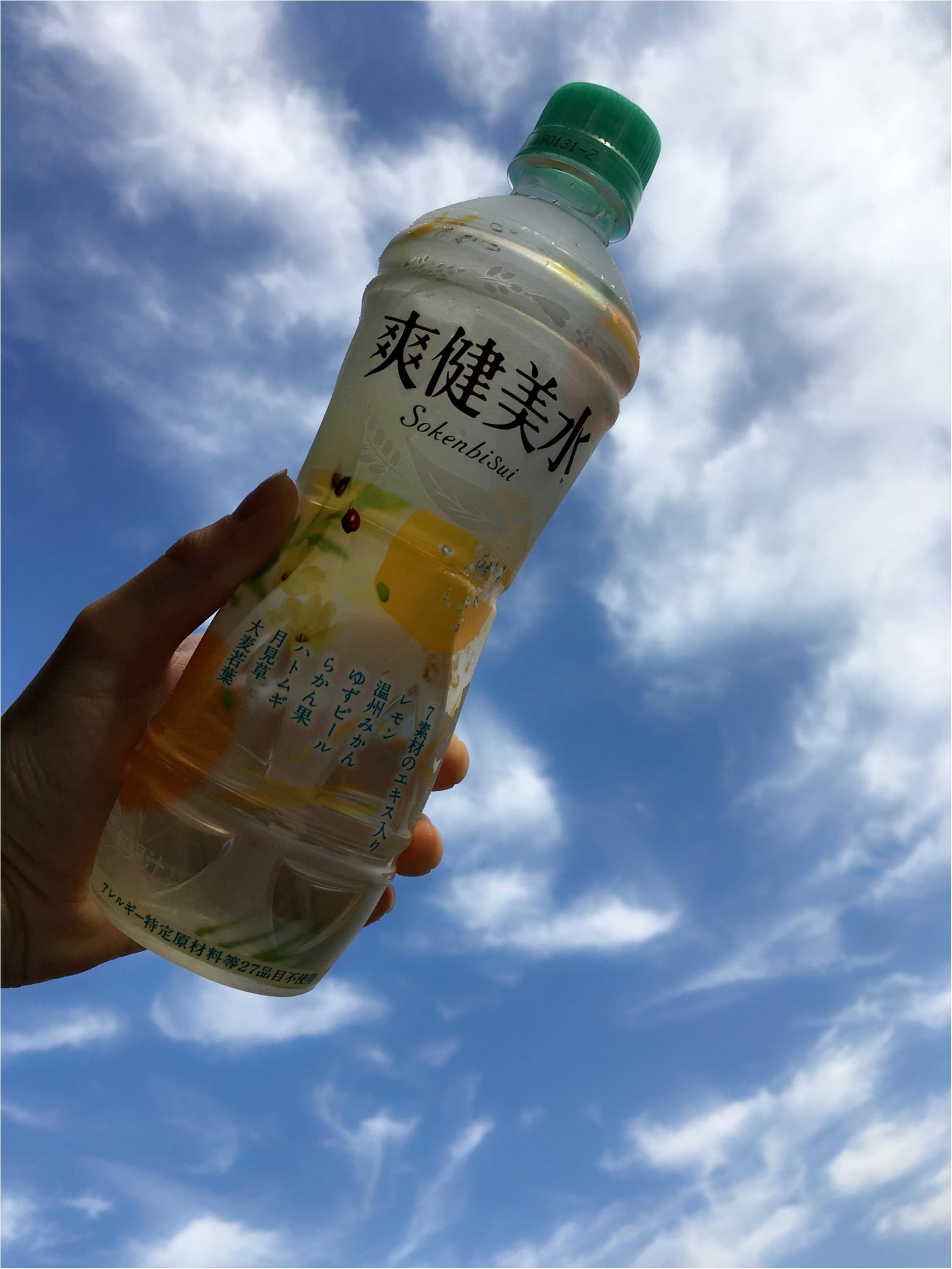 後味すっきり!夏の味!【爽健美水】_1