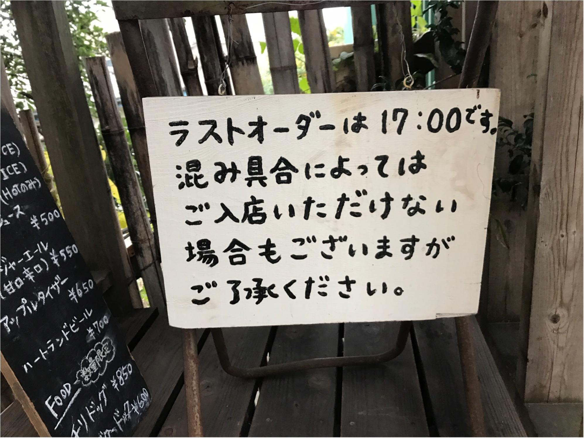 """【ドラマロケ地カフェ】女優水川あさみさん""""シェアハウスの恋人""""で使われたツリーハウスカフェ潜入!オトナの秘密基地発見!限定30食メニュー食べてきました♡♡_2"""