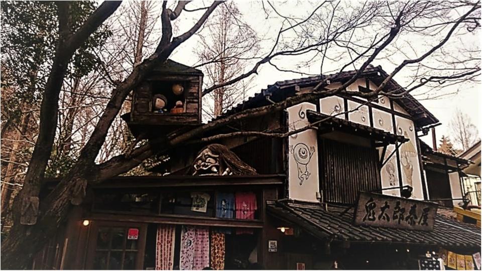 東京のパワースポットで開運♡_7