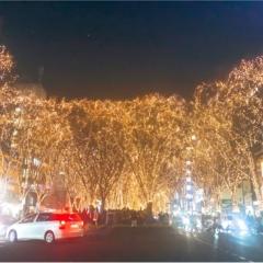 【仙台・イルミネーション】冬の風物詩!『光のページェント』が開催中です!!