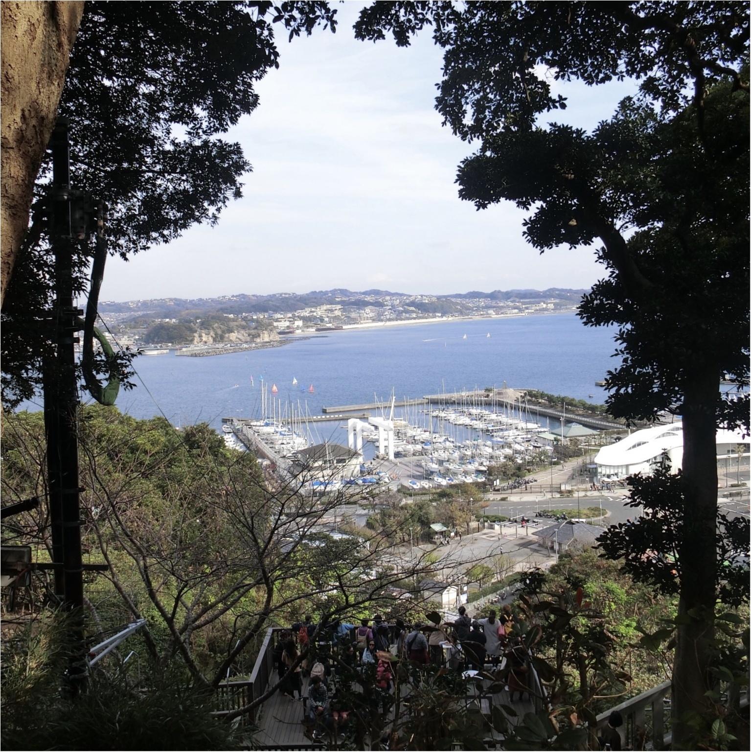 【LON CAFE①】フレンチトースト専門店〜江ノ島まったりデート〜_3