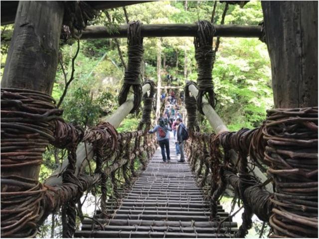 【一度は行きたい日本の絶景】徳島・祖谷のかずら橋_4