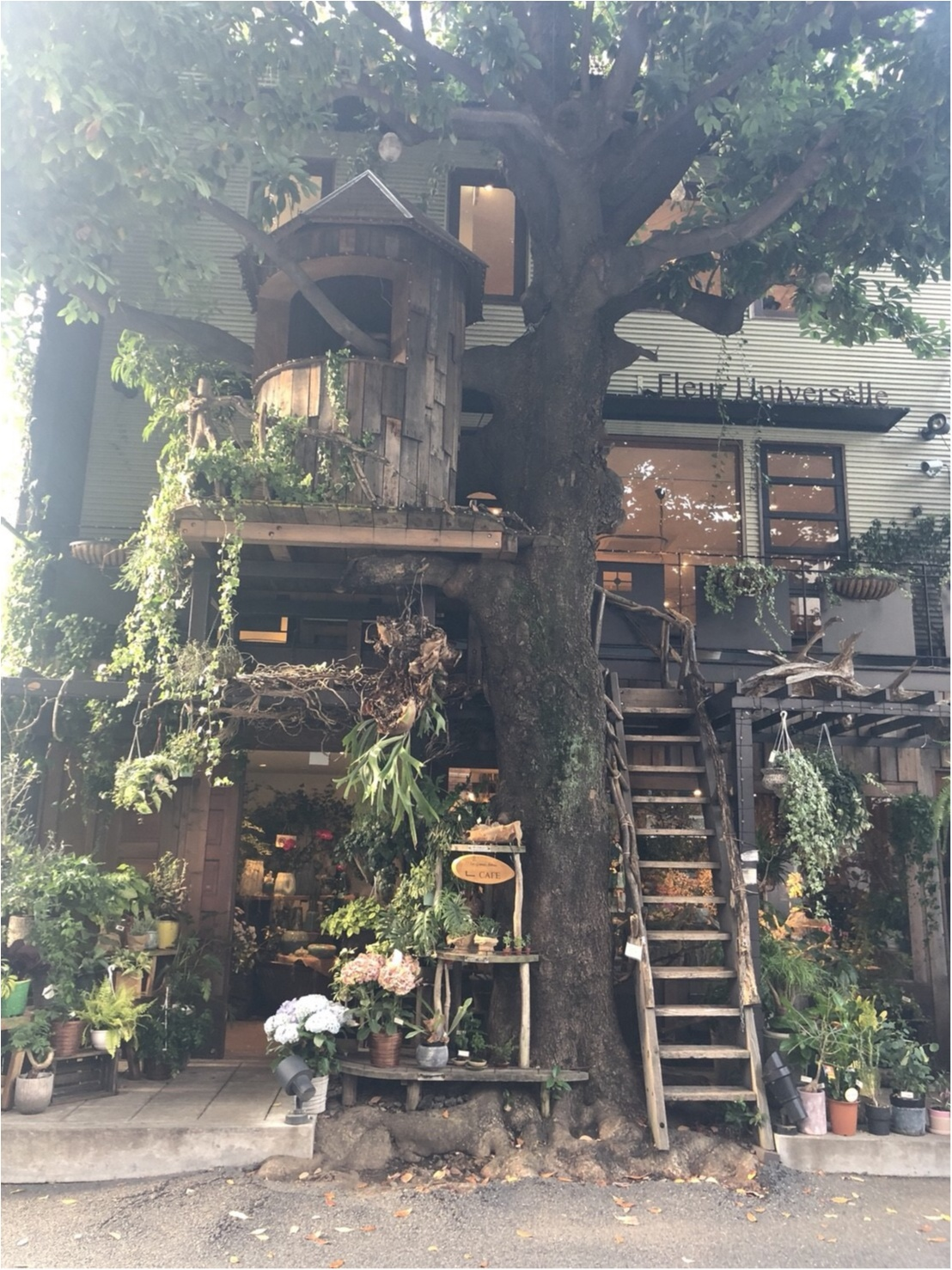 【東京】広尾にこんなお洒落なお店が?!緑溢れるツリーハウスカフェ♡_1