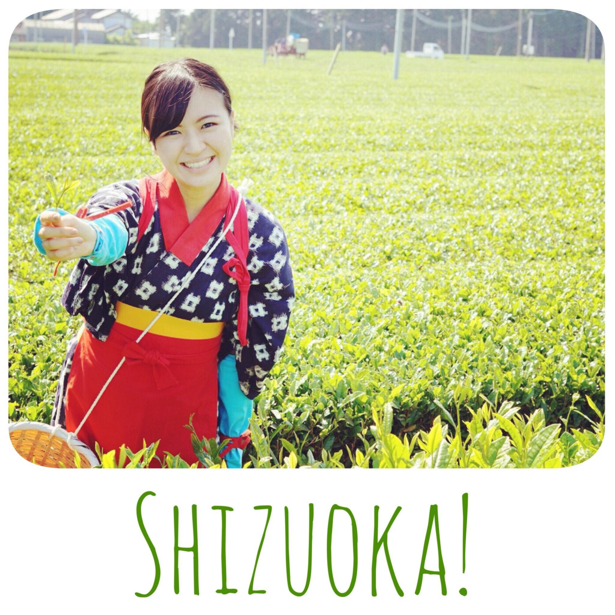 茶摘み娘を体験!静岡で非日常な時間を楽しもう♡_1