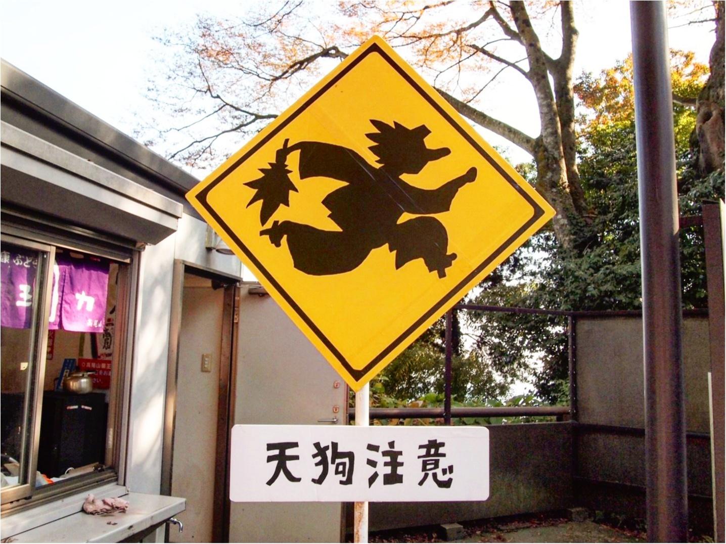 【しの散歩】世界一登山客が多い山!東京の紅葉スポットといえば、やっぱり『高尾山』がおすすめ♪_10