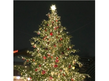 【恵比寿】クリスマス到来っ!恵比寿ガーデンプレイスのイルミネーションに惚れ惚れ♡