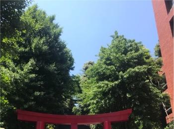【ご当地MORE♡東京】良縁・出世・金運いろんなご利益のある《愛宕神社》でお参りして2018年下期をすてきに過ごそう✌︎