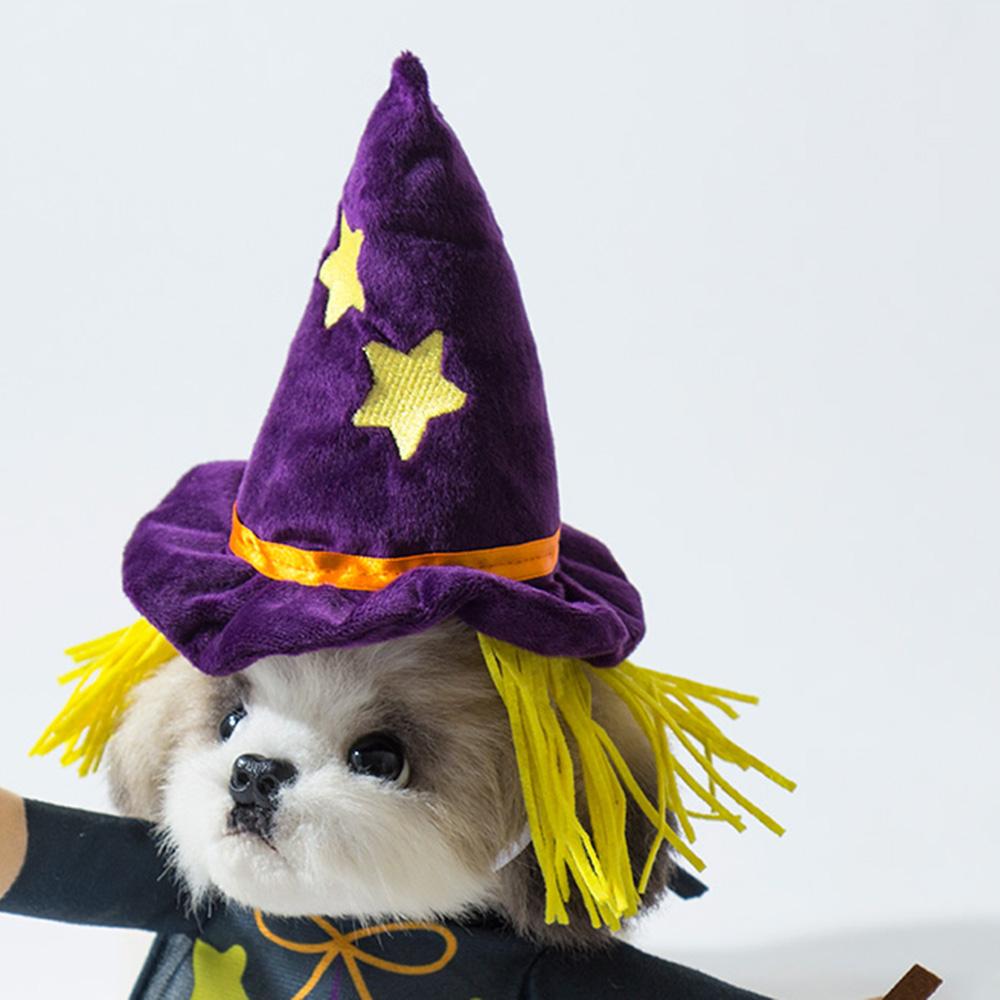 愛する犬・猫と楽しむハロウィン♡ 『3COINS』で買えるおすすめペットコスプレ8選_2