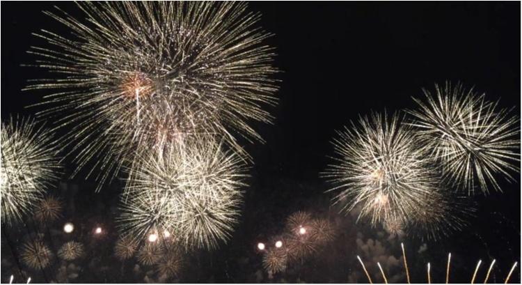 【秋の花火大会】日本三大花火が関東で見れる!!今年まだ花火を見ていない人必見♡♡詳細と去年の花火大会をお伝えします♡_3