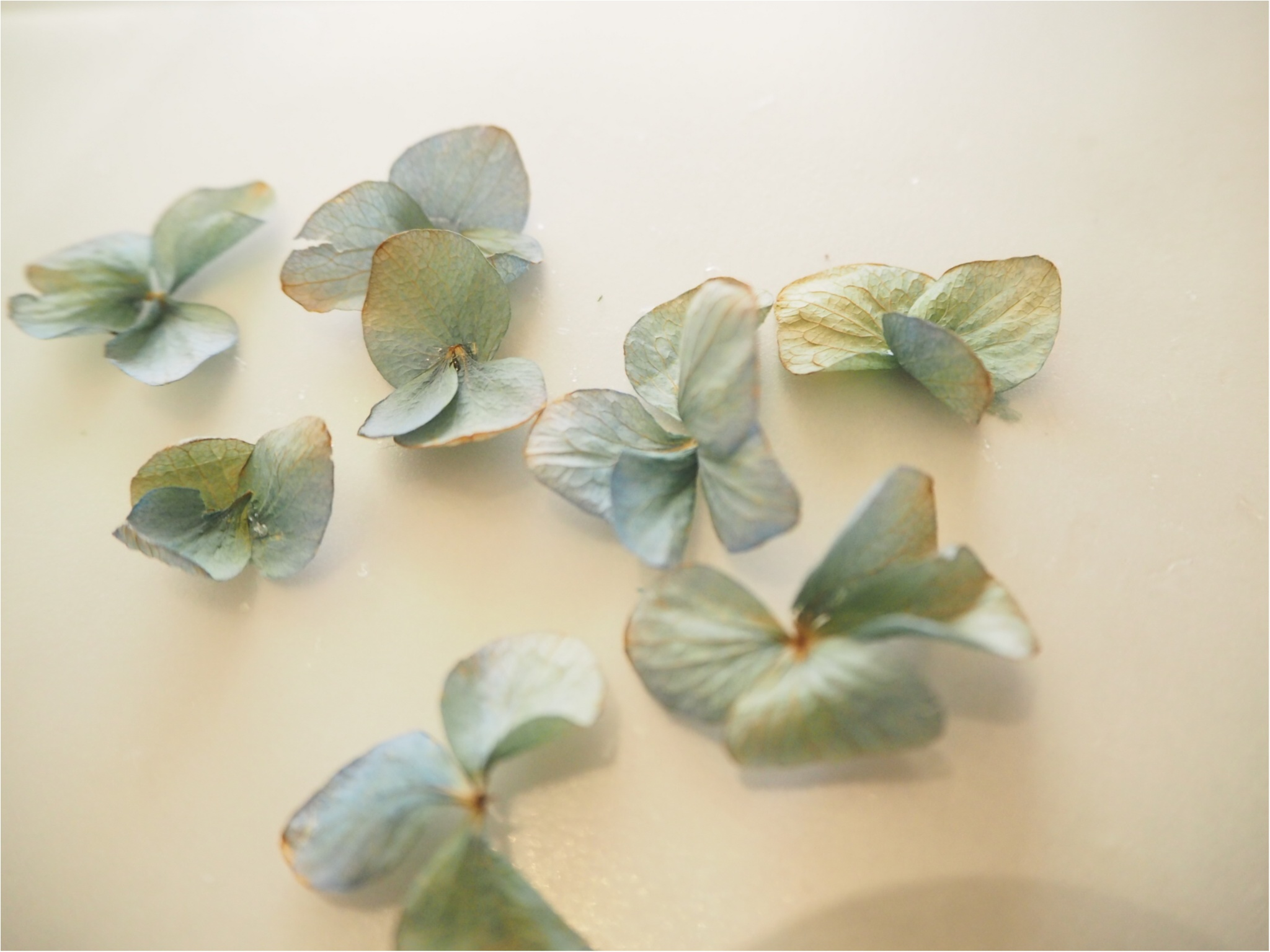 【ハンドメイド部】UVレジンを使って結婚式でいただいたお花を『ドライフラワーアクセサリー』にしてみました。_1