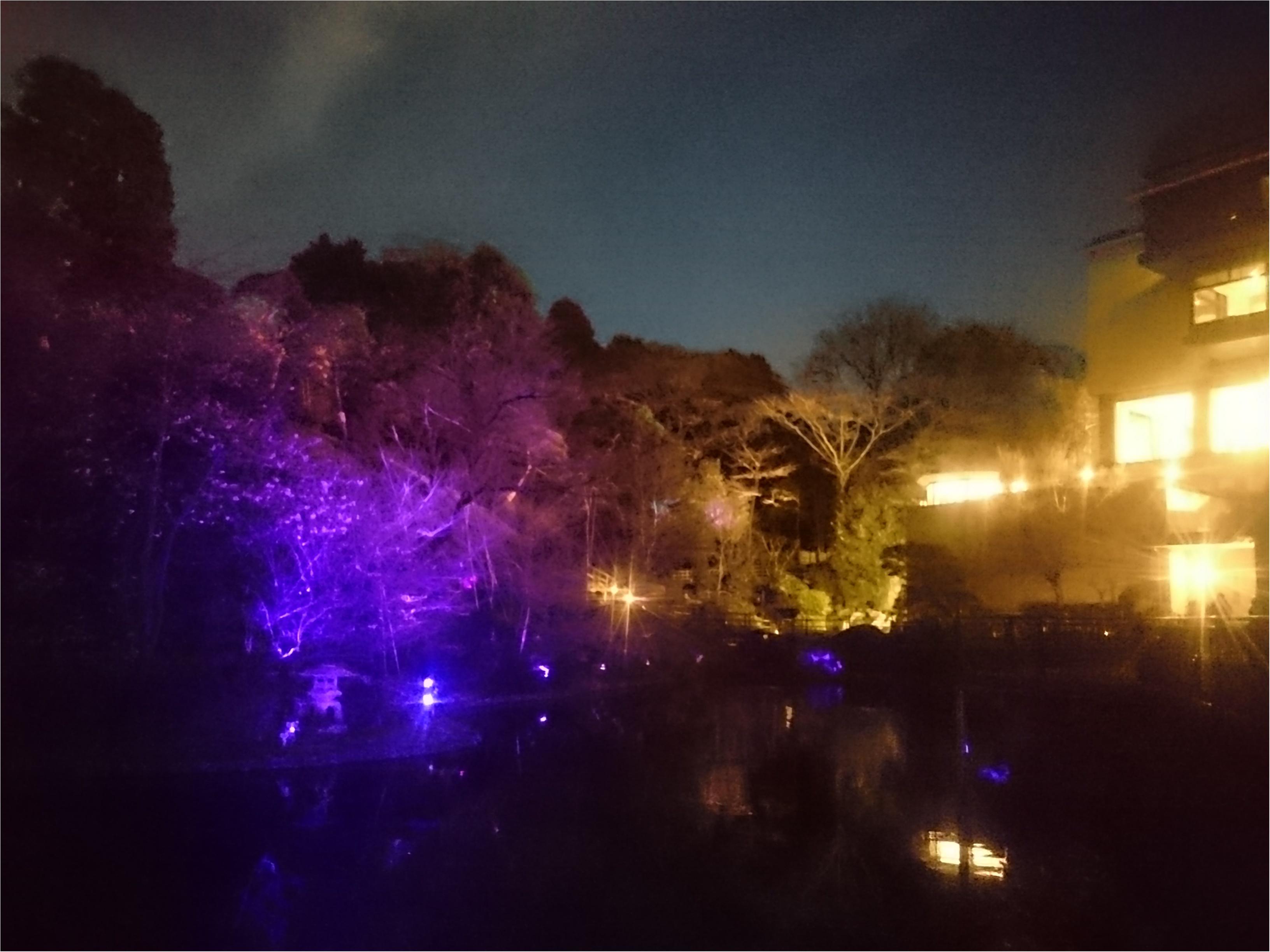 今日からはじまった「ホテル椿山荘東京」の桜イブニングキュートティーへ行ってきました♥_5