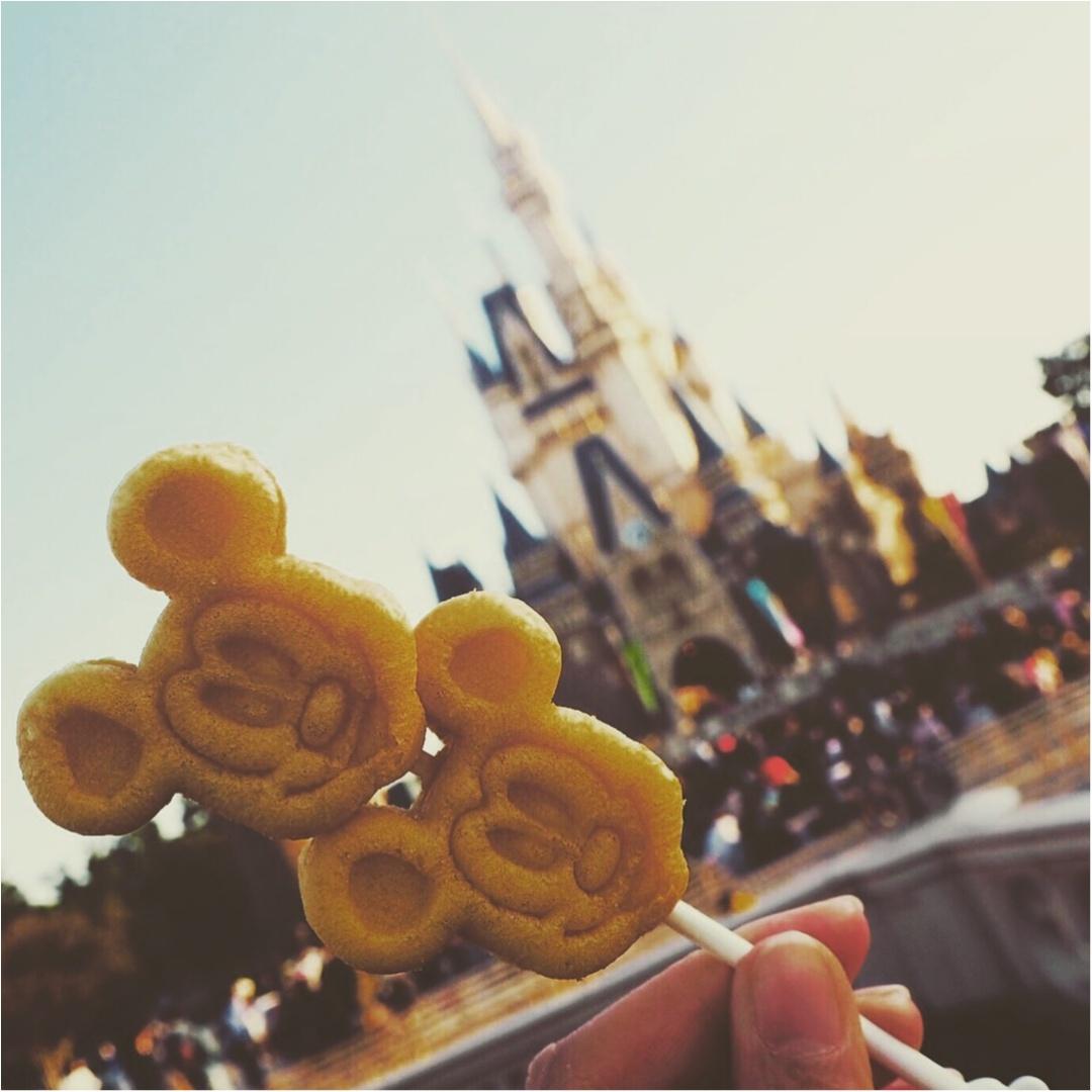 《Disneyland》にお出かけしたら絶対撮りたい❤︎ 可愛い&お洒落な写真は《ココとコレ》を押さえましょう☝︎★_6