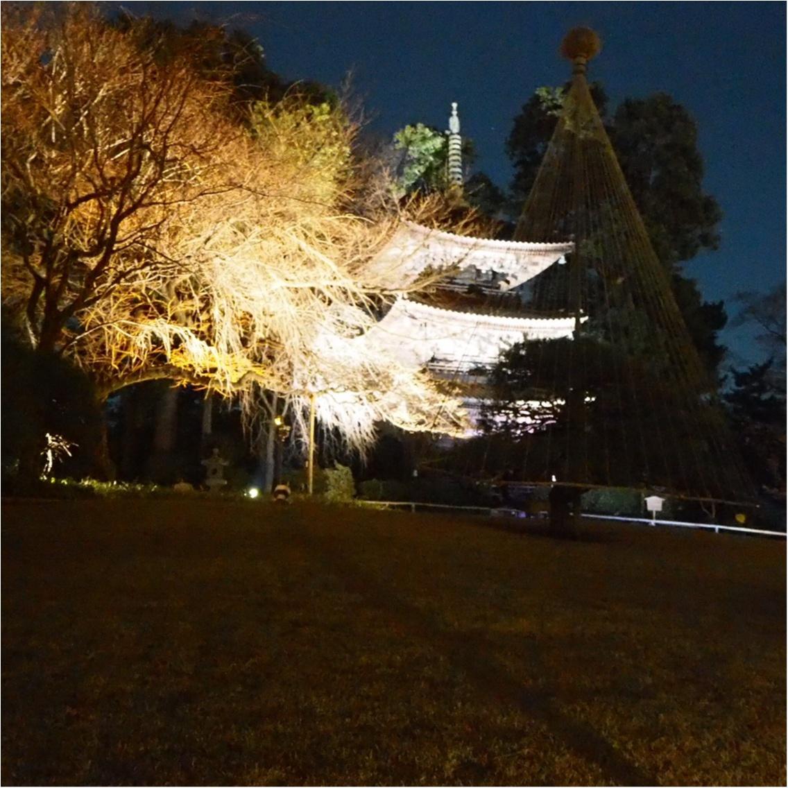 素敵な庭園がある【ホテル椿山荘東京】で美味しいイブニングティーを満喫♡_7