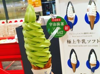 """<北海道>新千歳空港限定!""""きのとや""""の最新作ソフトクリームを食べてきました!♡"""