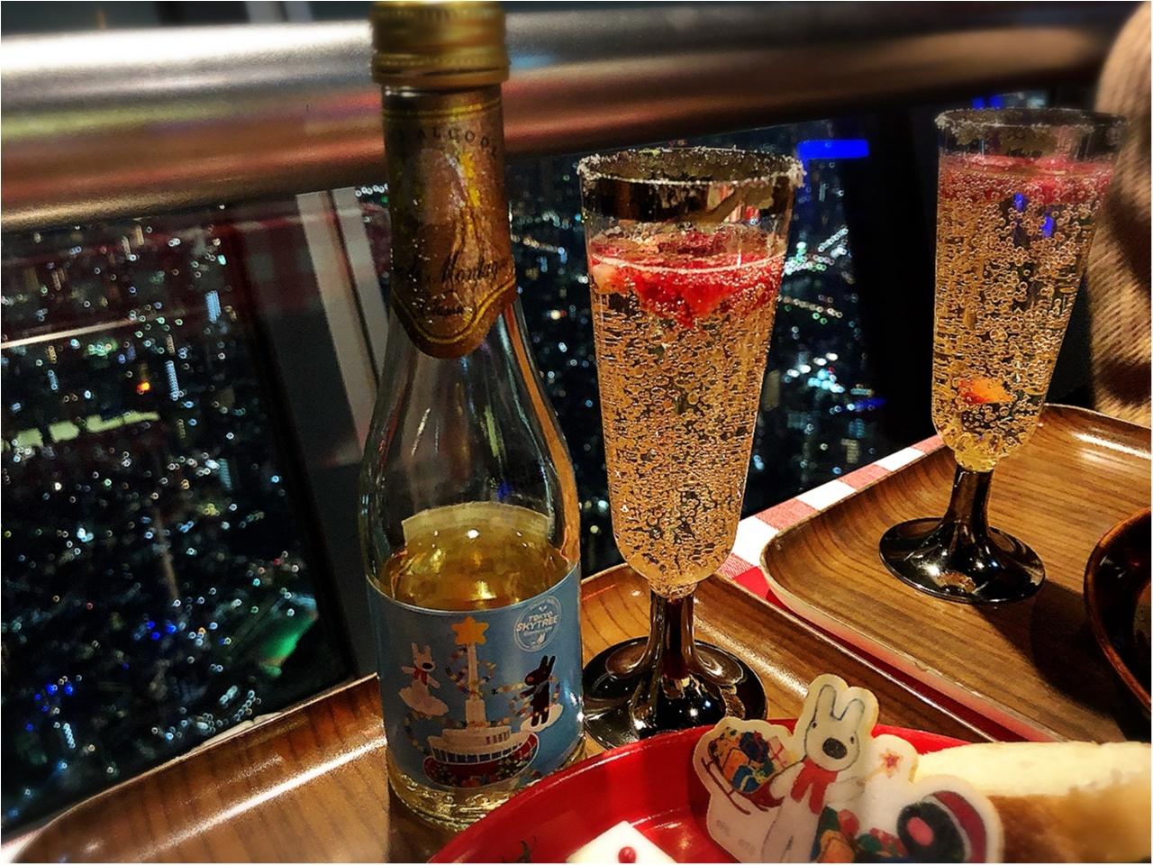 東京スカイツリー展望デッキで夜景とともに『リサとガスパール』のコラボクリスマス!!_3