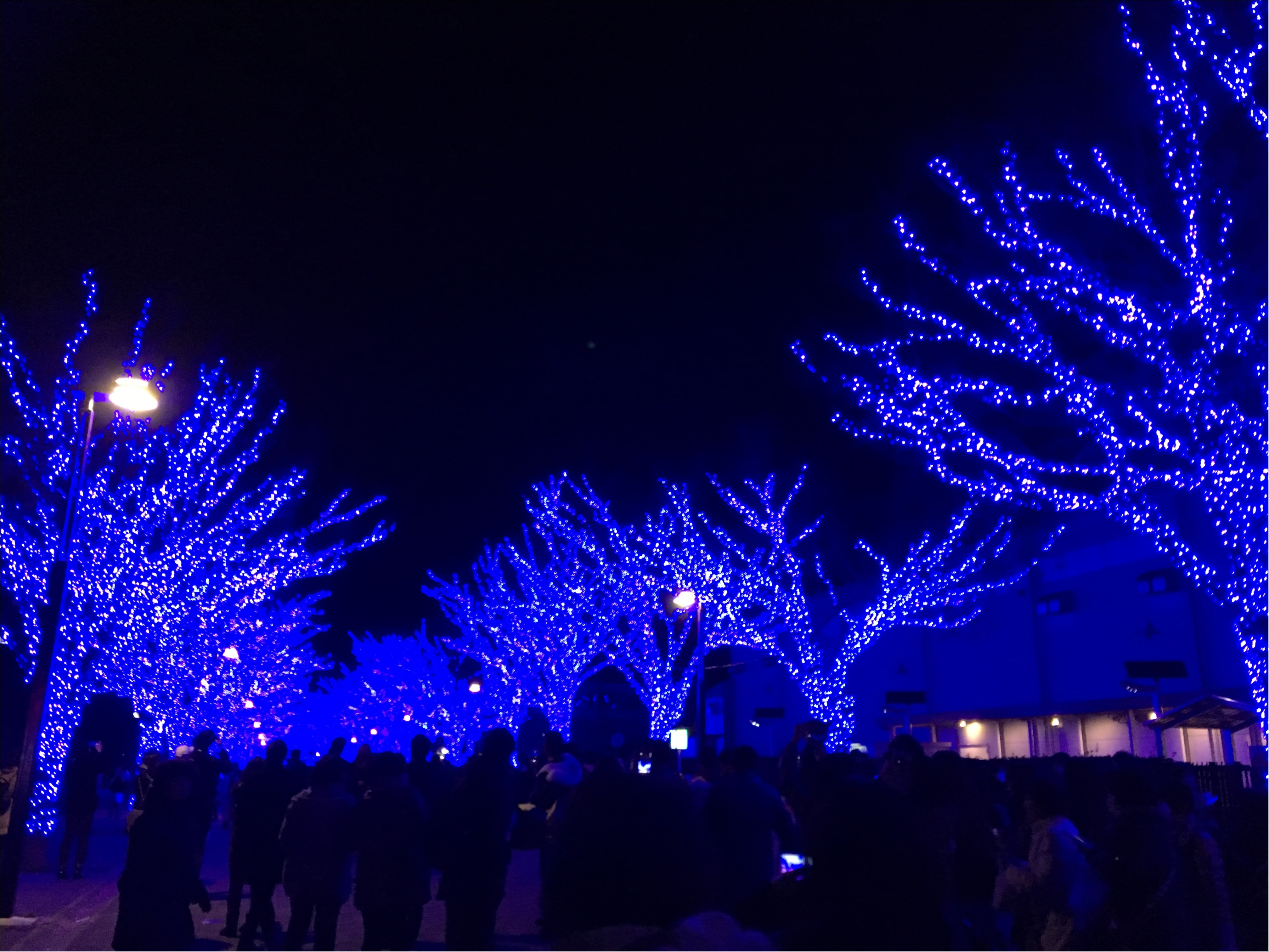 青い洞窟♡_2