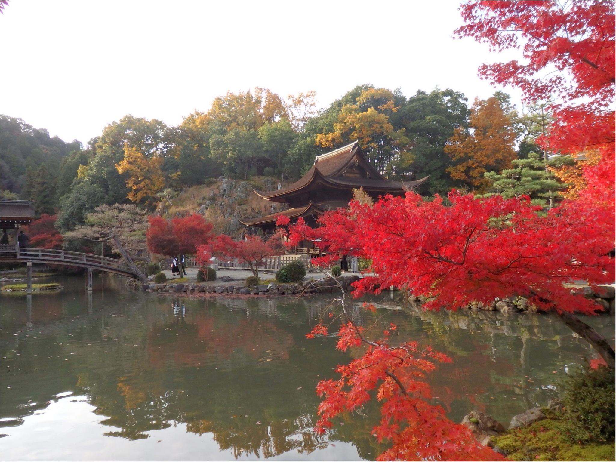 【イケメン地蔵】話題の岐阜で秋を満喫♪_8