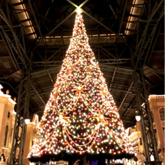 """忘れられない""""冬の思い出""""をつくろ☆ おすすめの「クリスマスイルミネーションスポット」まとめ♡"""