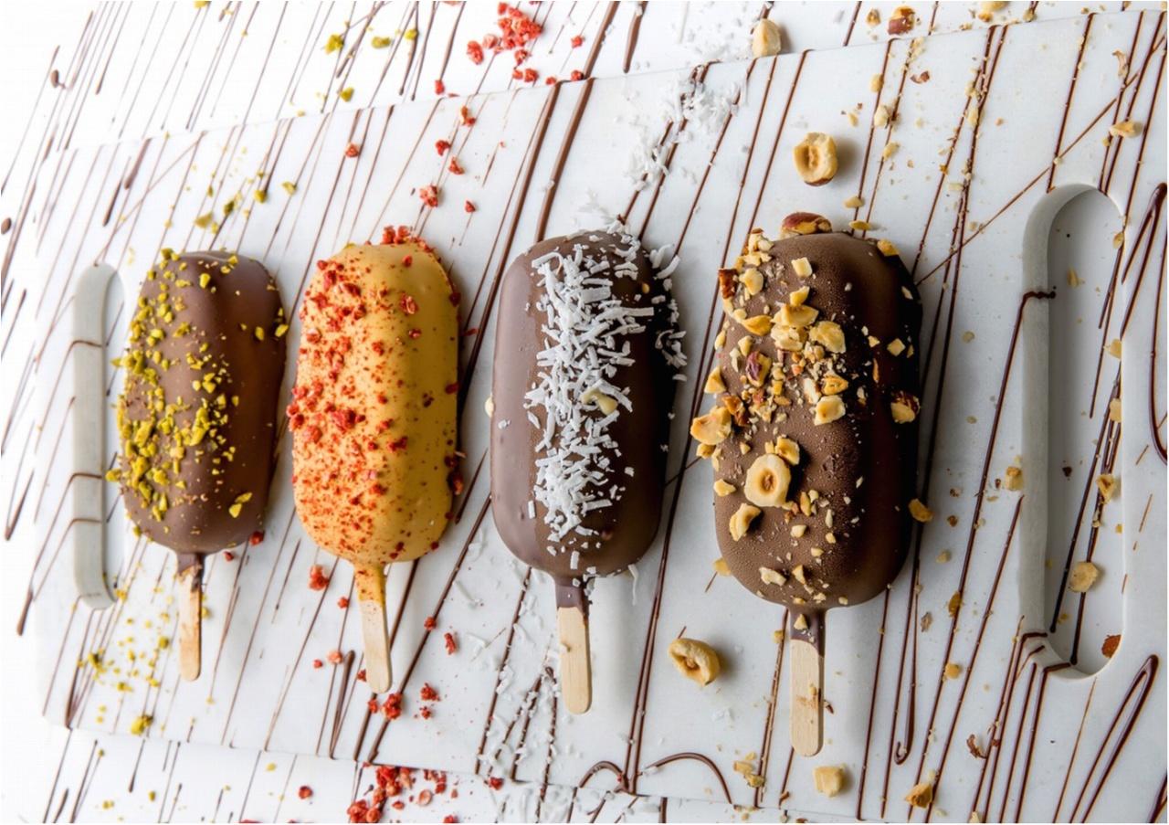 日本オリジナルのアイスクリーム販売中☆ 話題のチョコレートブランド『サマーバード オーガニック』って知ってる?_1