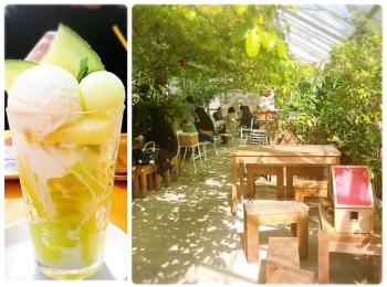 【#静岡】メロン農園直営❁緑に包まれたガーデンのようなカフェが魅力!甘〜いメロンをいただきました♩
