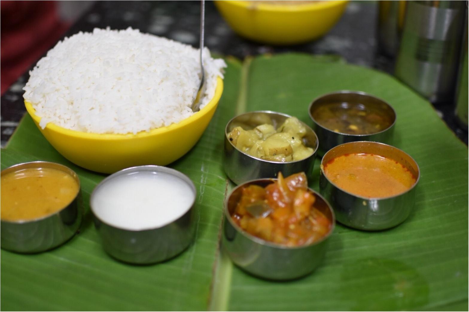 【インド旅】カレーが好きすぎて、本場へ旅してきました♪_6