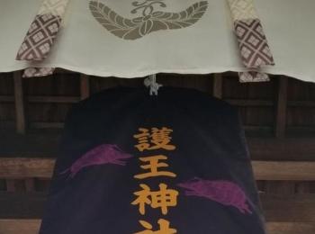 ≪関西・京都≫開運巡り☆ 狛いのししが目印・護王神社