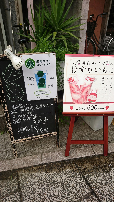 【スイーツ】いちごをまるごと削っちゃった!綱島に行ったら食べたいFood特選_7