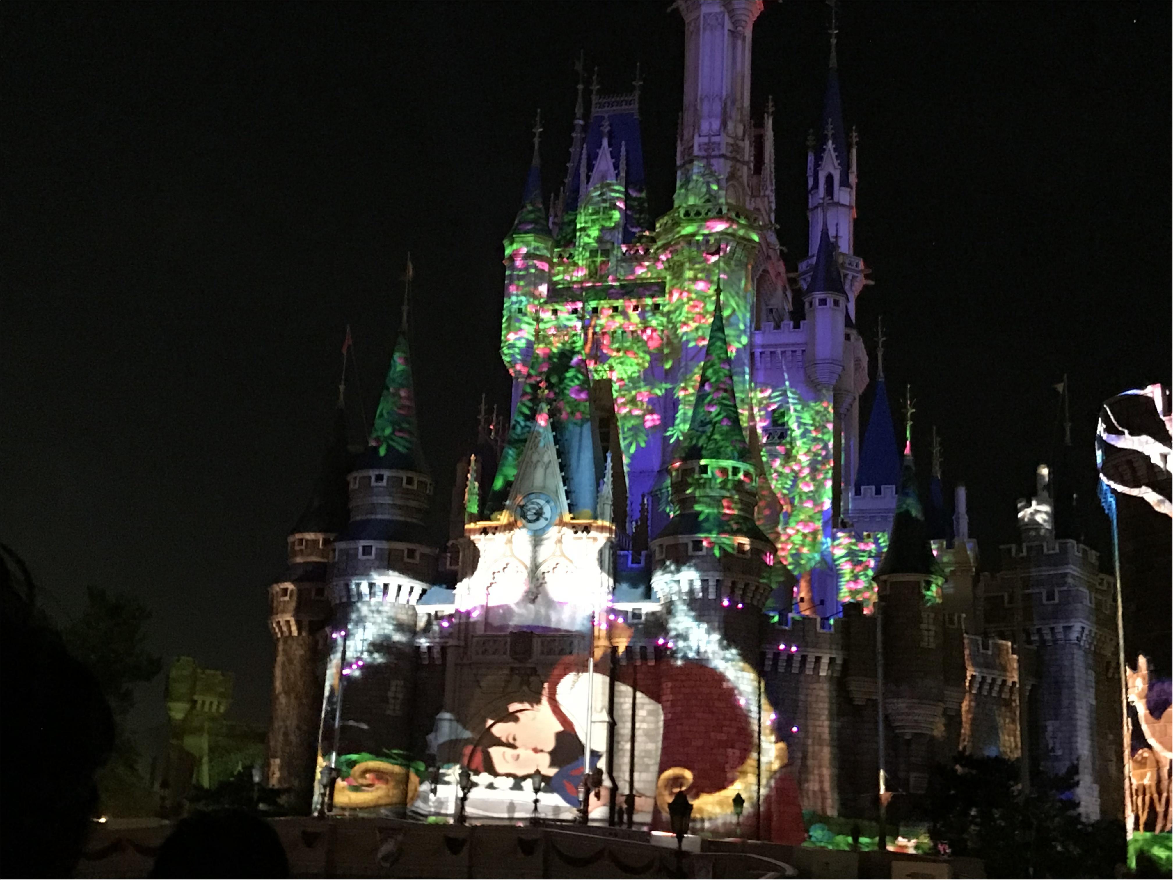 【超話題!】東京ディズニーランドのナイトタイムスぺクタキュラー_3