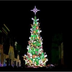クリスマスモード一色のユニバは歩くだけで楽しい!こだわりのイルミネーションを楽しもう!