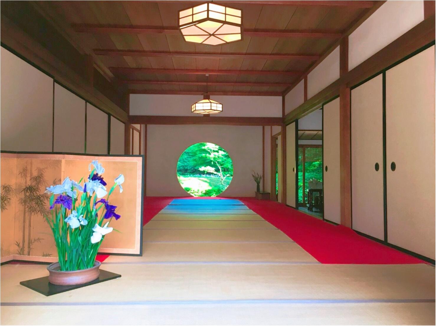 《 鎌倉 》へは今行くのがおすすめ!紫陽花が見頃です ♡_6