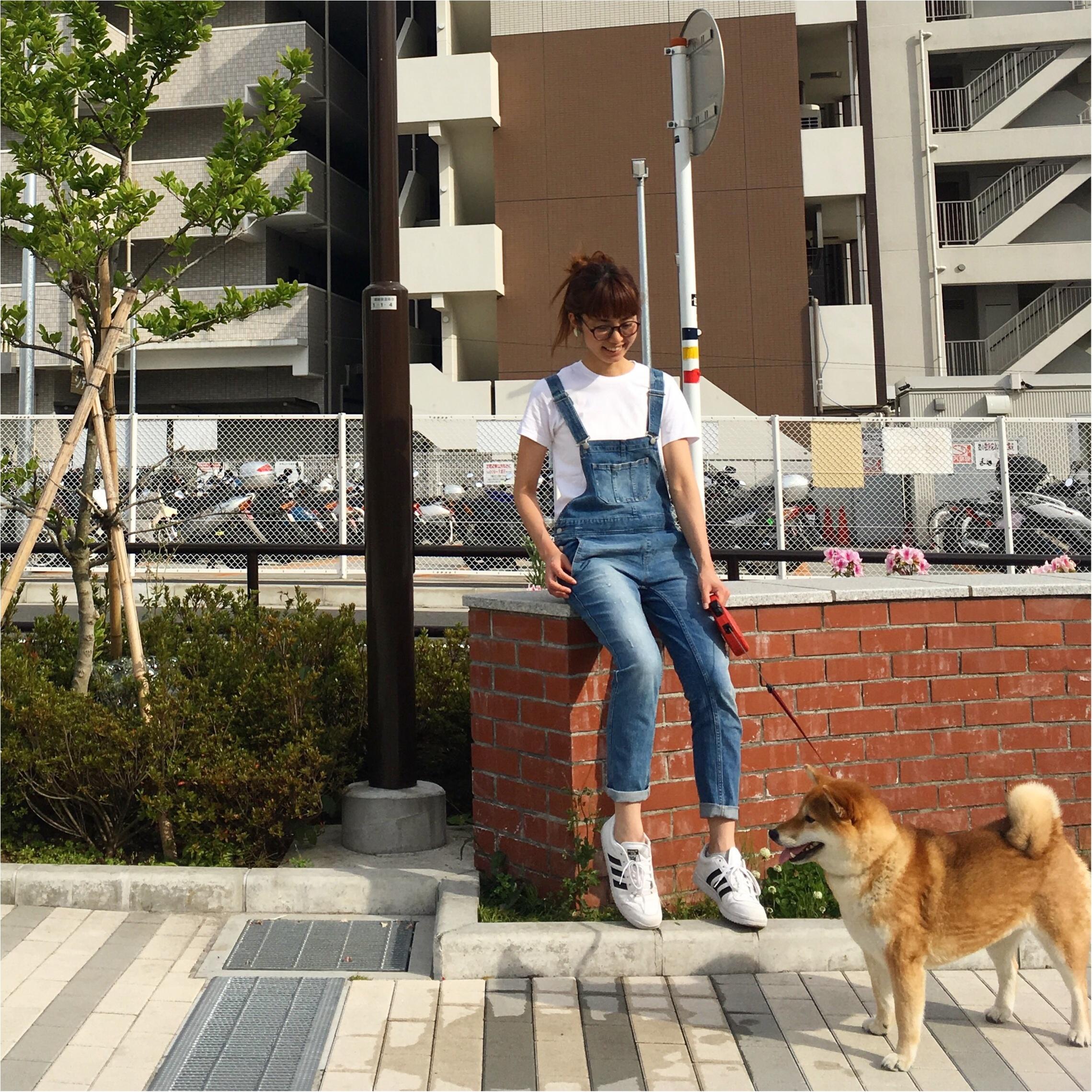 ★柴犬ナッツとお散歩コーデ★_8