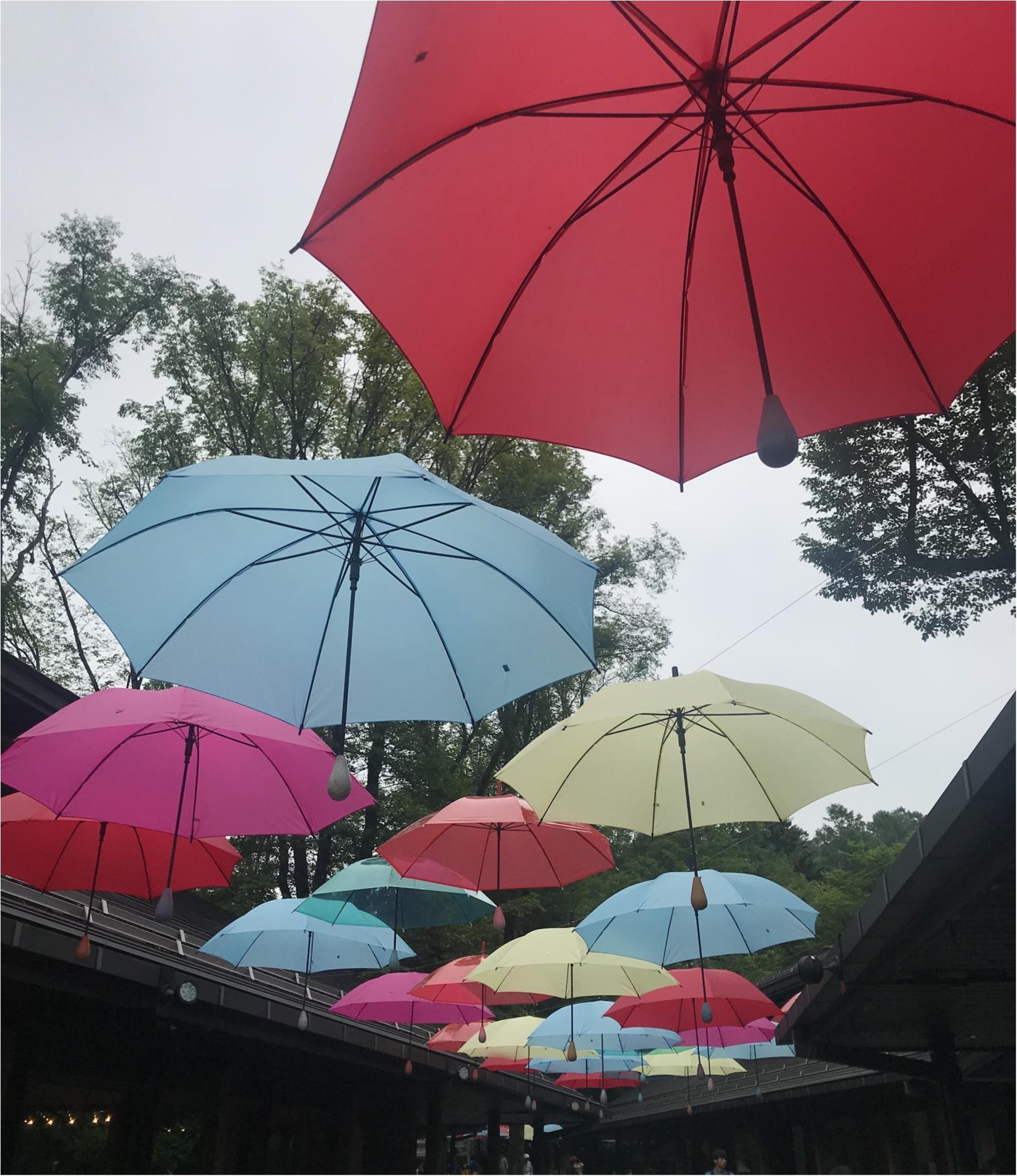 【軽井沢】梅雨が楽しく!カラフルなイベント開催中♡_1